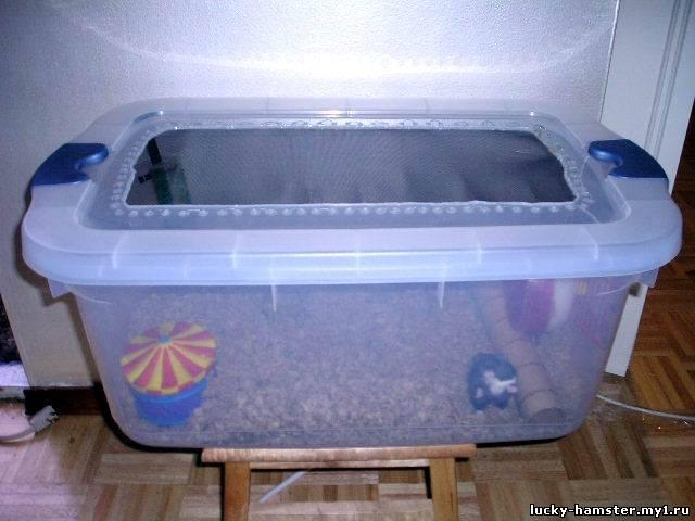 Клетка для хомяка своими руками из контейнера