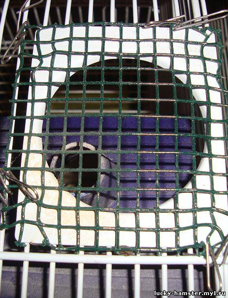 http://lucky-hamster.my1.ru/_fr/8/7104236.jpg