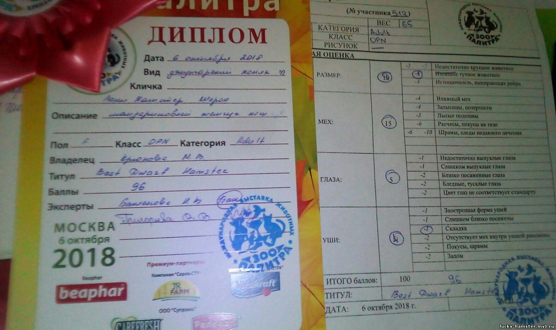 http://lucky-hamster.my1.ru/_fr/8/8394805.jpg
