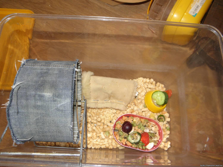 Как сделать гнездо для хомяка