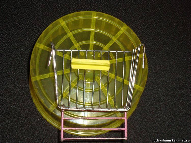http://lucky-hamster.my1.ru/_fr/9/2574868.jpg